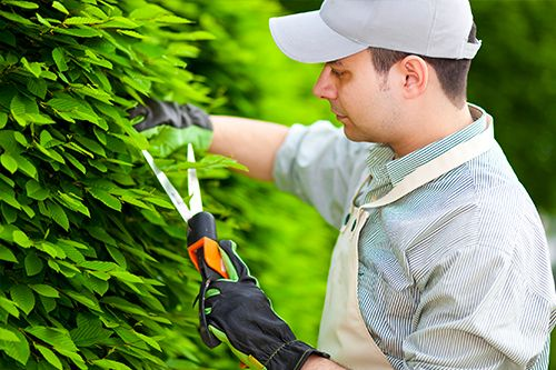 Novaliss emploi espaces verts
