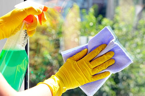 Novaliss, emploi de ménage