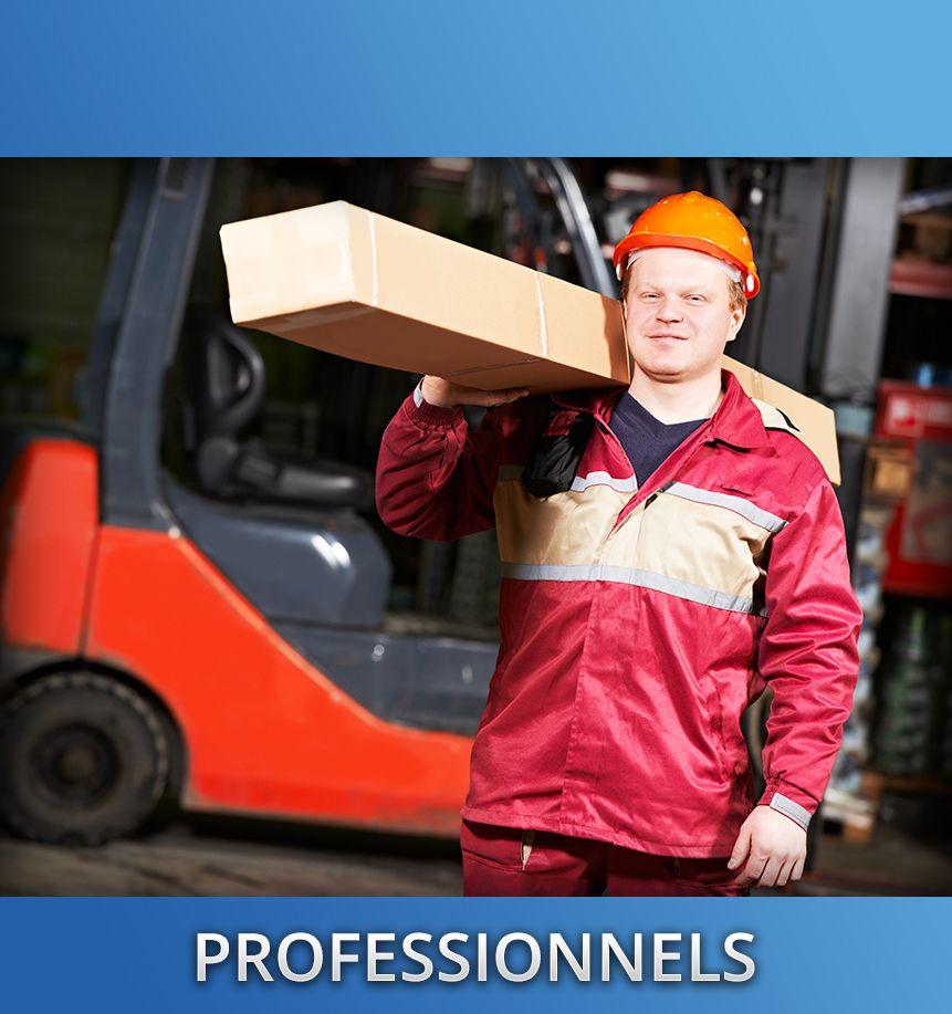 professionnels-1